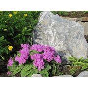 Глыба каменная мраморный известняк фр. 15-40 кг фото