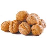 Орехи в Молдове фото