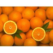Апельсины Греция фото