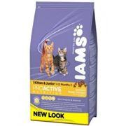 IAMS Cats Kitten&Junior rich in Chicken 1.5 kg фото
