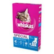 Корм Сухие рационы Whiskas Special pH control фото