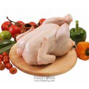 Мясо птицы фото