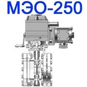 Механизмы электрические мэо 250 25 0 25 фото