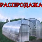 Сверхпрочне Теплицы из Поликарбоната. Доставка по Беларуси. фото