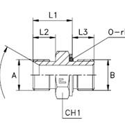 Прямой адаптер, уплотнение тип H Резьба BSP фото