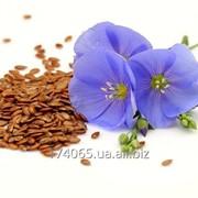 Семена лен маслиничный фото