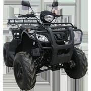 Квадроцикл Armada Atv 150R фото