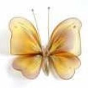 Бабочка средняя полосатая золотая 19*13 см фото