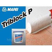 TRIBLOCK P, трёхкомпонентный грунтовочный состав на основе эпоксидной смолы и цемента для влажных поверхностей, 5 кг фото
