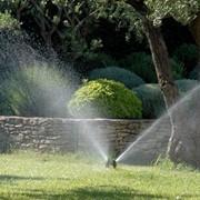 Озеленение сада. Системы полива. фото