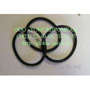 Кольцо уплотнительное 304-168-8-2 фото
