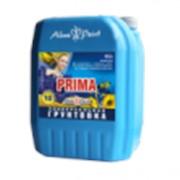 Универсальная грунтовка Prima Alina Paint фото