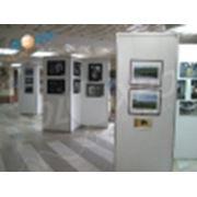 Организация и проведение выставок фото