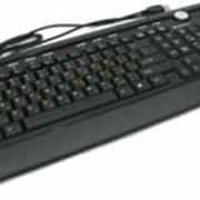 Клавиатура Defender Bern S 790 фото