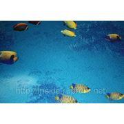 Ткань «Жаккард» (Jacquard) рыбки фото