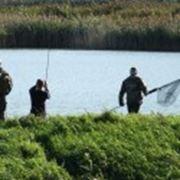 Организация развлекательных рыбалок фото