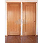 Двери межкомнатные различных конфигураций фото