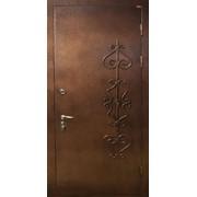 Наружные двери с покраской 11 фото