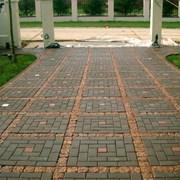 Тротуарная плитка в Пензе фото