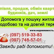 фото предложения ID 4623335