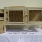 Клетка с маточником для кролика средних пород фото