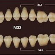 Частичный гарнитур 8шт. Жевательные нижние A3.5 M33 фото