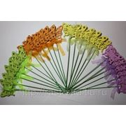 Флористические вставки для комнатных цветов