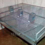 Клетки для кроликов фото