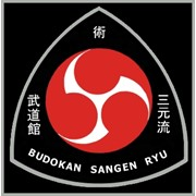 Занятия Джиу-джитсу, Айкидо, Кобудо в Спб. фото