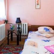 Аренда посуточно,помесячно в частном доме в Киеве на Нивках фото