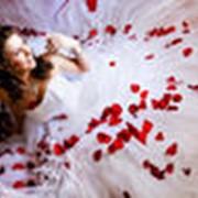 Свадебный фотограф фото