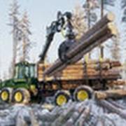 Лесозаготовка, специальная техника. фото
