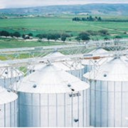 Зернохранилища WESTEEL фото