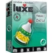 Презервативы LUXE Maxima №1 Гавайский Кактус 556 фото