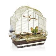 Клетка для средних попугаев Imac Elisa фото