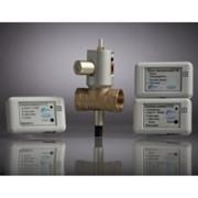 Система САКЗ-МК®-2 (природный/сжиженный газ и оксид углерода) БЫТОВАЯ фото