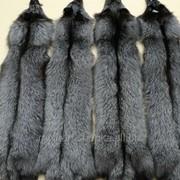 Шкурки лисы чернобурки выделанные фото
