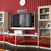 Мебель на заказ по индивидуальным проектам фото