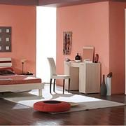 Изготовление любой корпусной мебели на заказ. фото