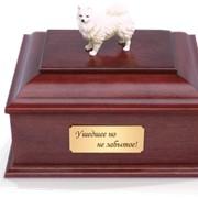 Кремация умерших домашних животных фото
