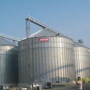 Силосные банки для хранения зерновых и масличных культур фото
