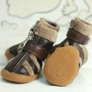 Обувь для собаки фото