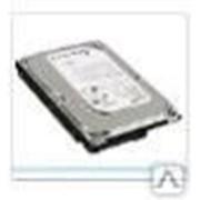 Жесткий диск HDD 500Gb Green Western Digital фото
