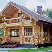Строительство загородных домов из Карпатской Ели фото