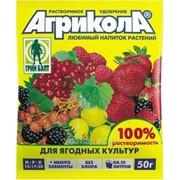 Подкормка для растений Агрикола 8 ягодная фото