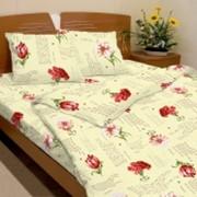 Ткань постельная Бязь 125 гр/м2 150 см Набивная цветной 3398-1/S TDT фото