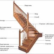 Подступеньки для лестниц из ясеня фото