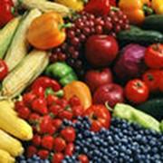 Оптом фрукты и овощи фото