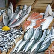 Копчение рыбы фото