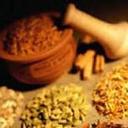 Семена лекарственных растений фото